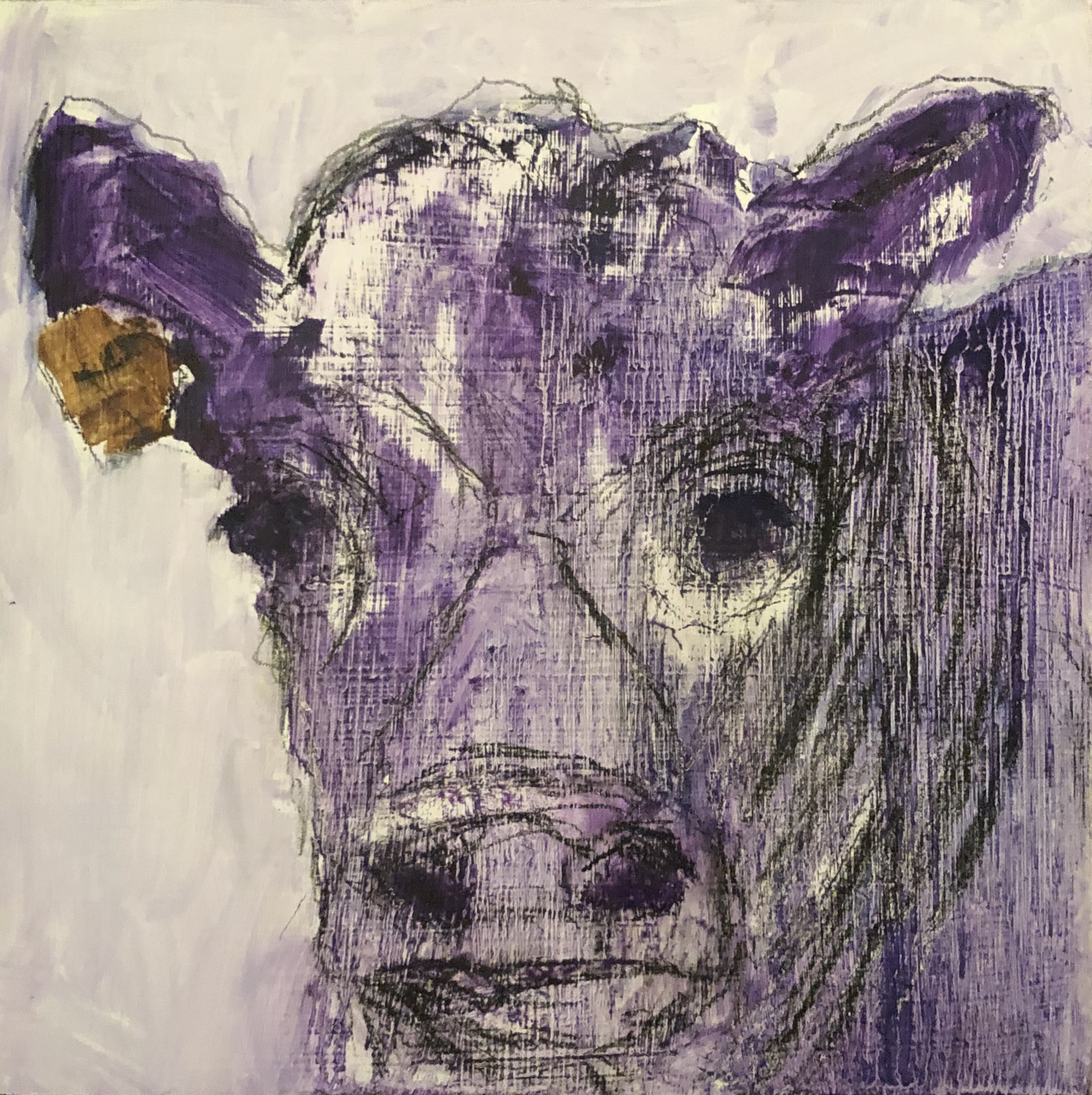 "Purple Cow, Oil on Panel, 6""x6"" SOLD"