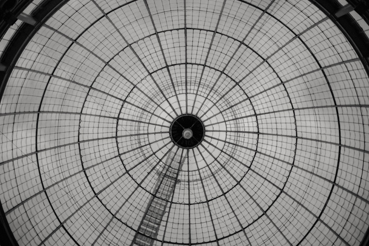glass roof of great conservatory at syon park