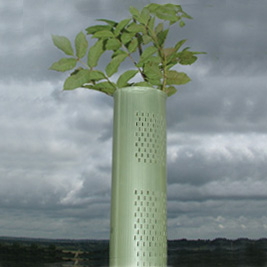 Tubex Combitube® Tree Shelter