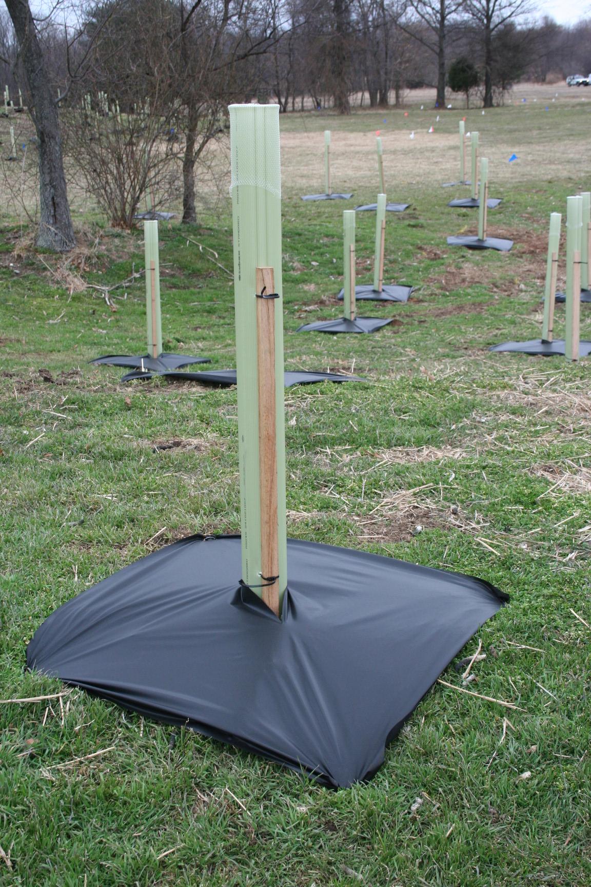 VisPore® Tree Mat