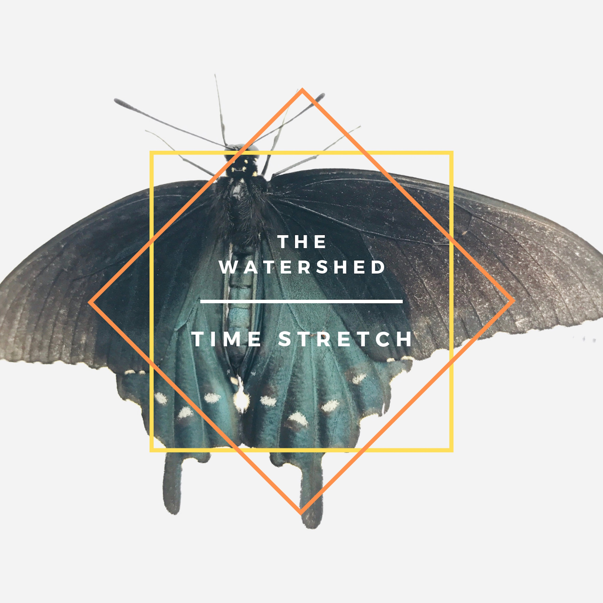 "SHED 011 : THE WATERSHED ""TIME STRETCH"" SORTIE LE 8 MAI, 2019"