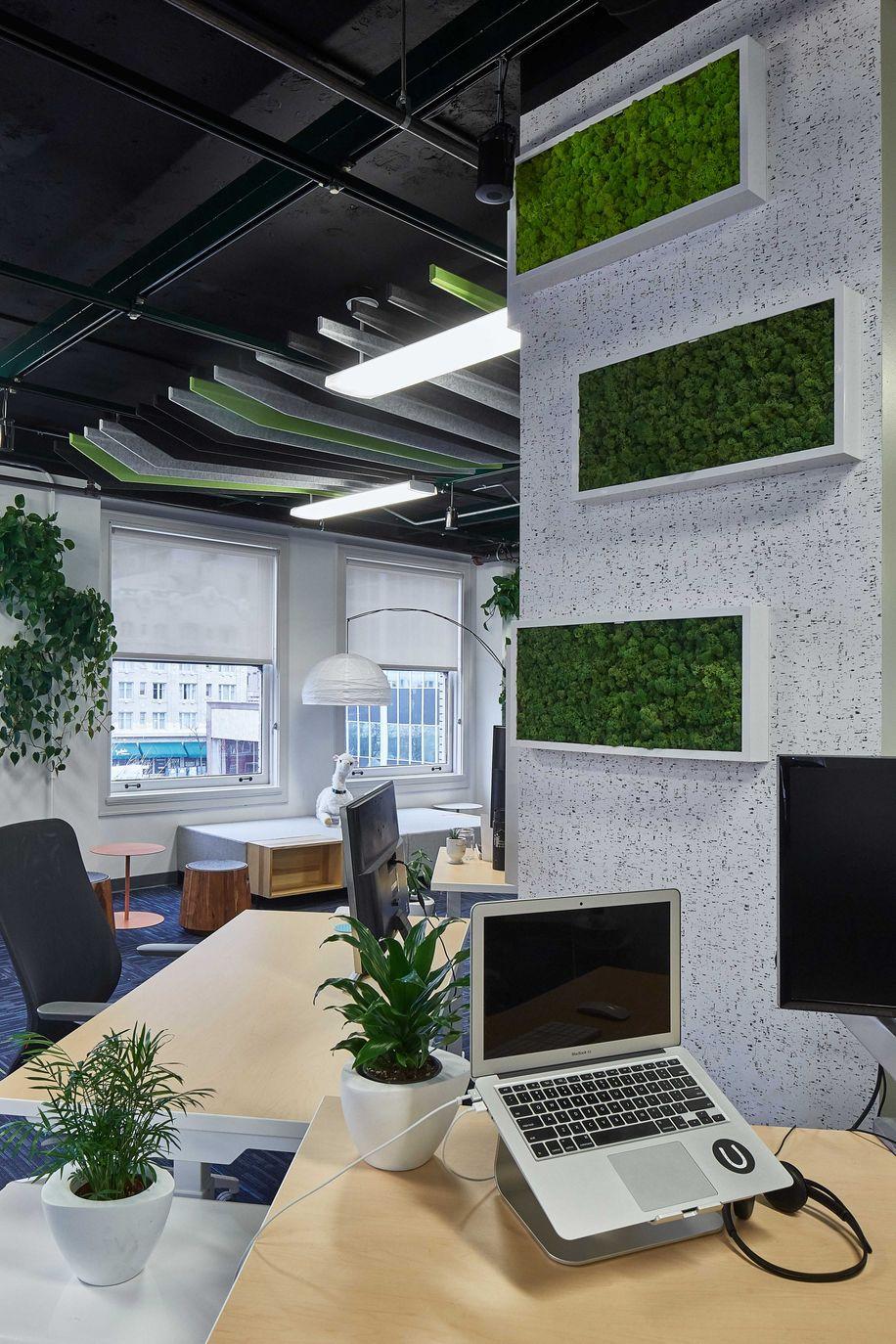 office-biophilia.jpeg