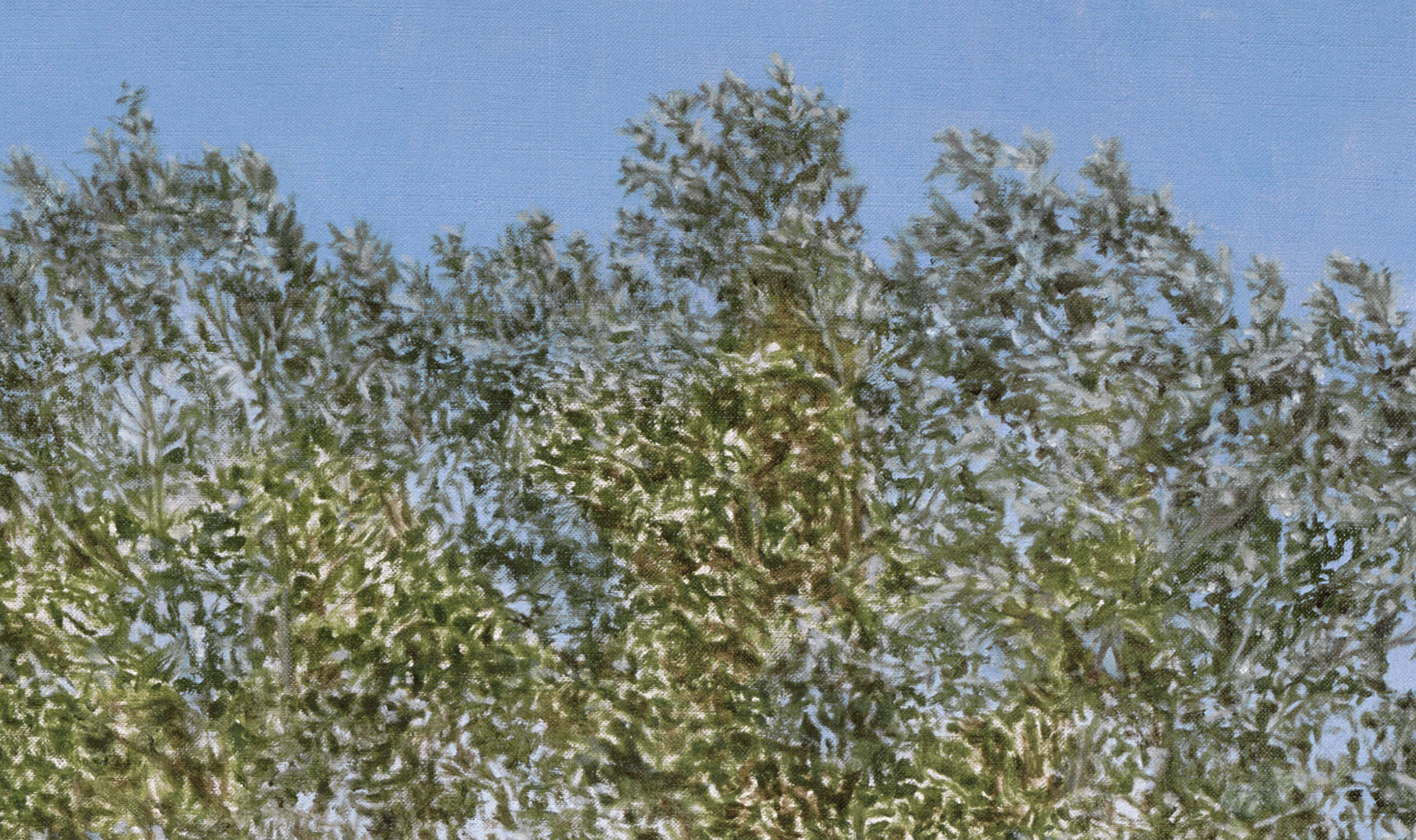 Montana Detour Tree  (Detail), 2014 Oil on linen 60 1/2 x 38 inches