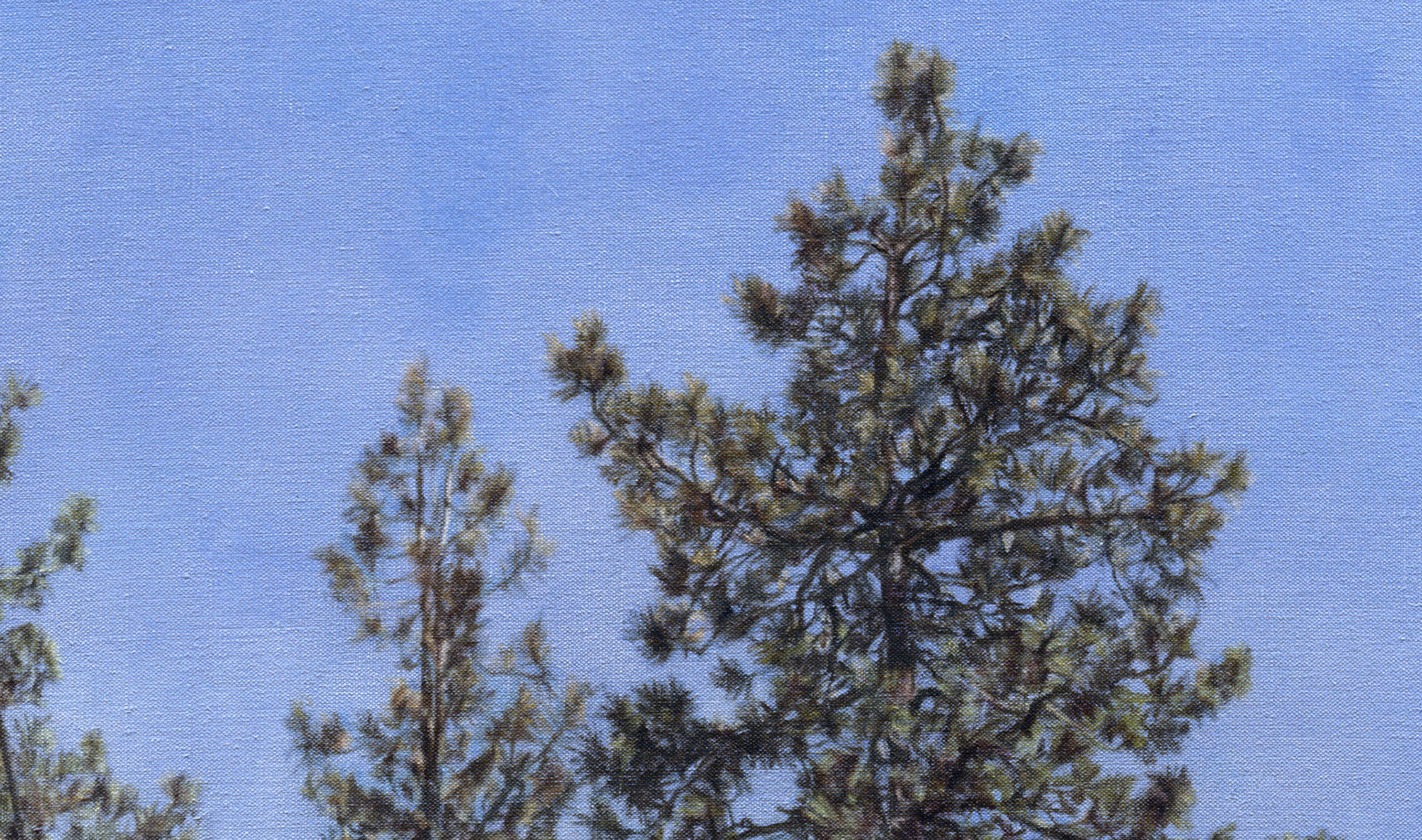 Big Bear Land Slab  (Detail), 2011 Oil on linen 48 x 47 inches