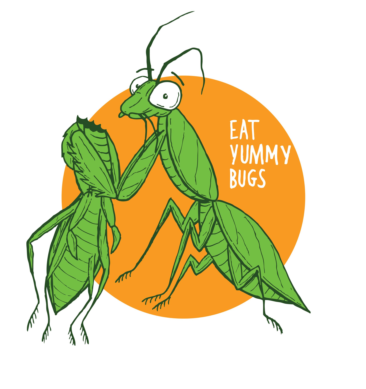 Eat Yummy Bugs
