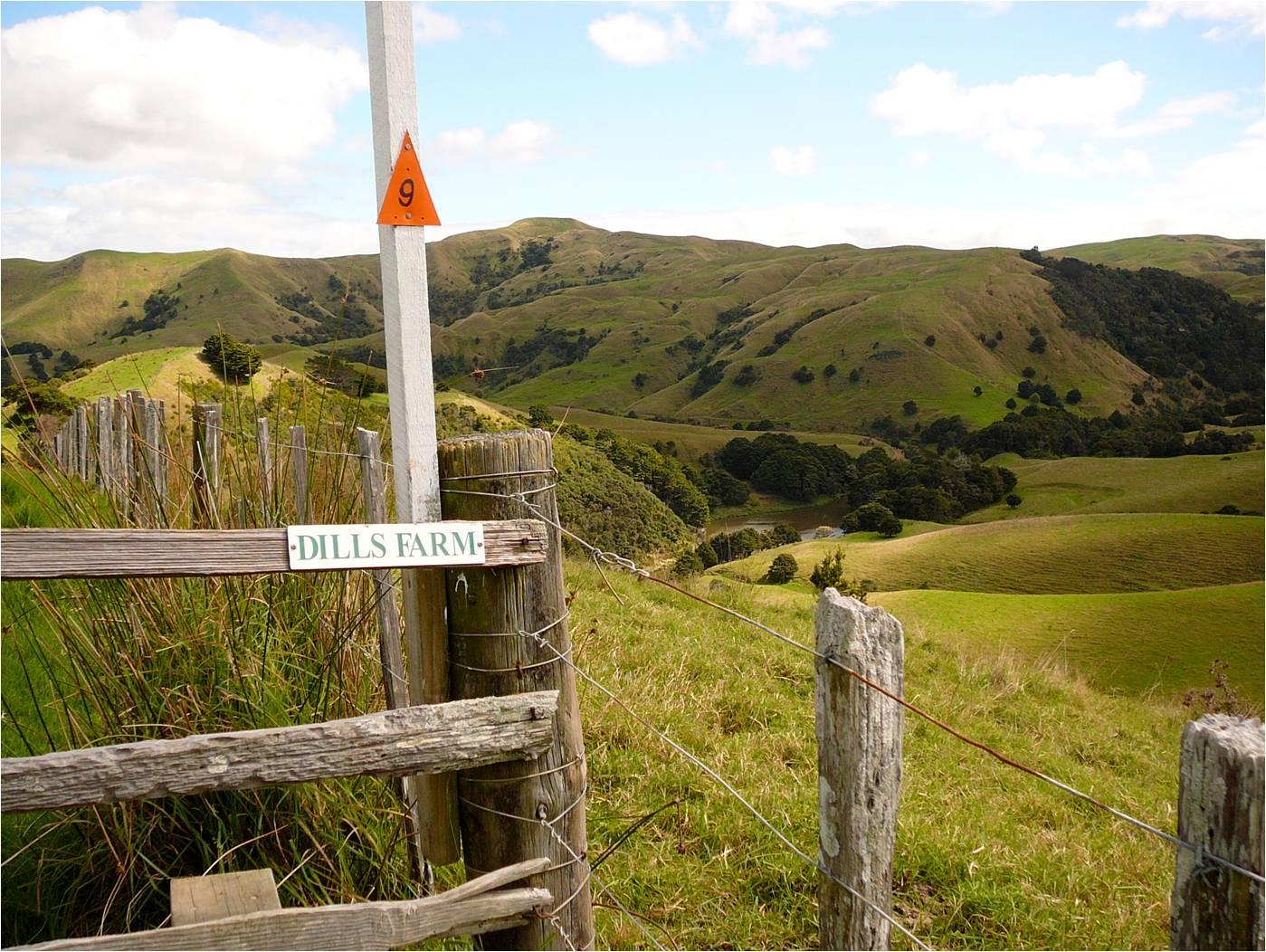 Dills farm sign.jpg