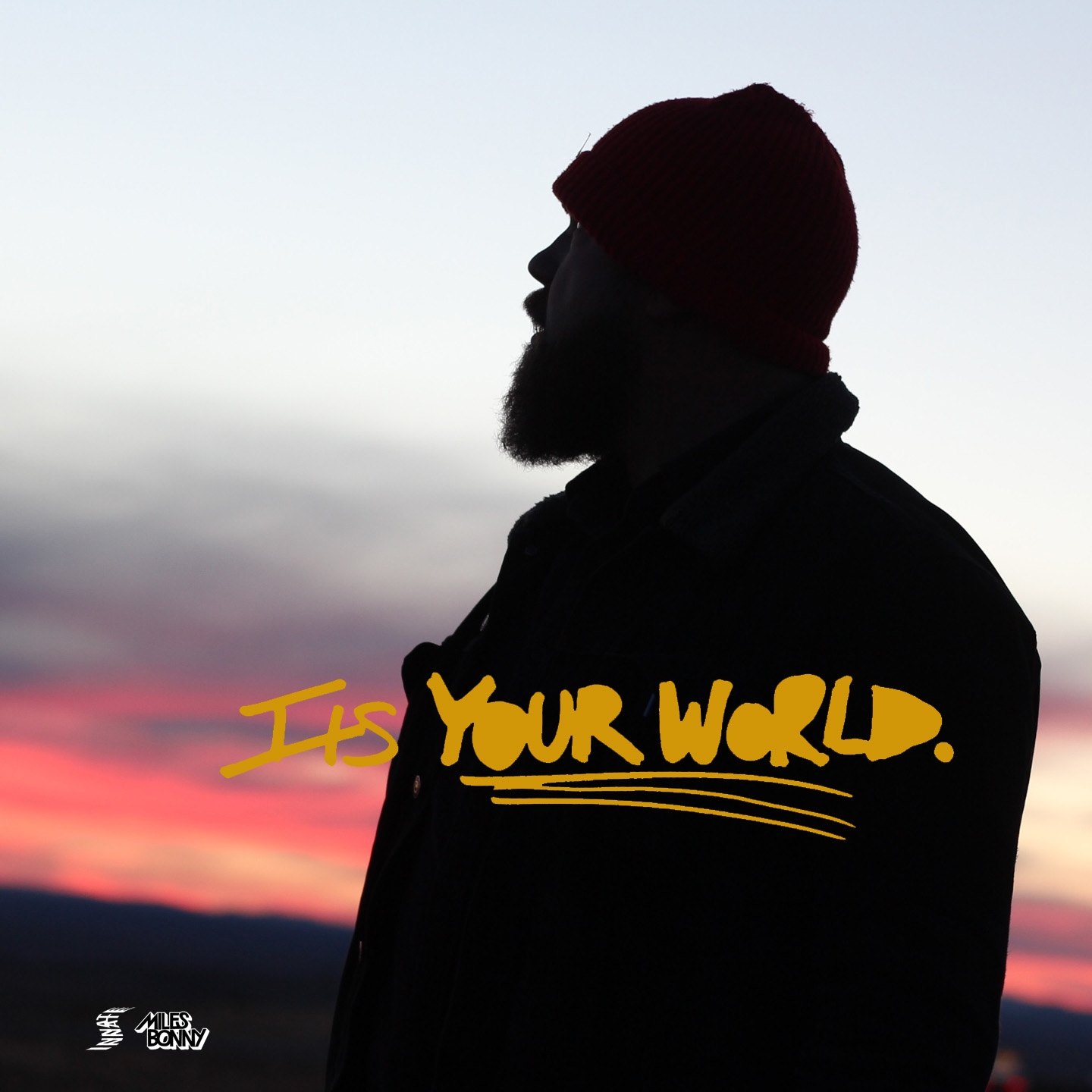 ITS YOUR WORLD COVER_MILES BONNY copy.jpg