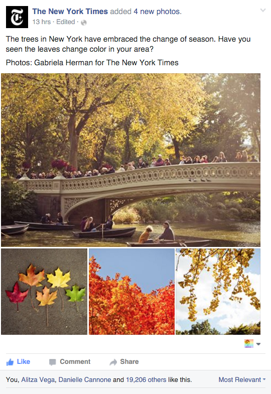 Shot some fall foliage for the New York Times