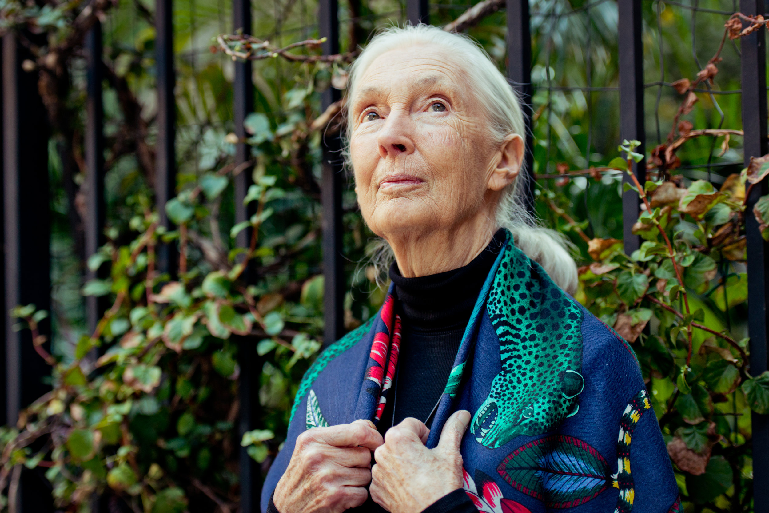 Jane Goodall in Soho, NYC