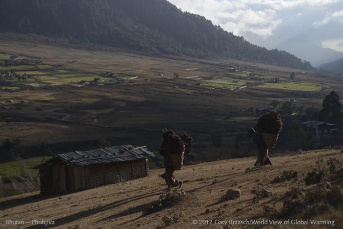 BhutanSelect1Jpg_190_DSC3741Braasch.jpg