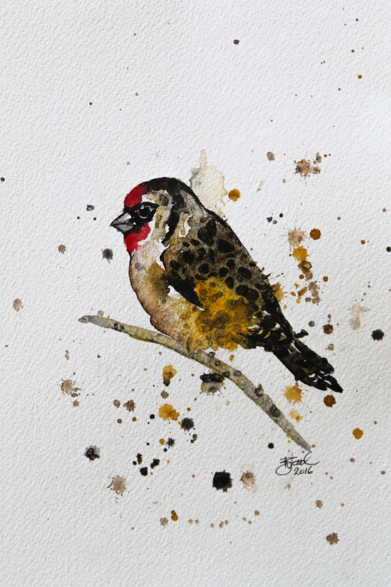 "DAY TWO: Goldfinch (5.8x8.3"") Watercolour and Unipin Pen"