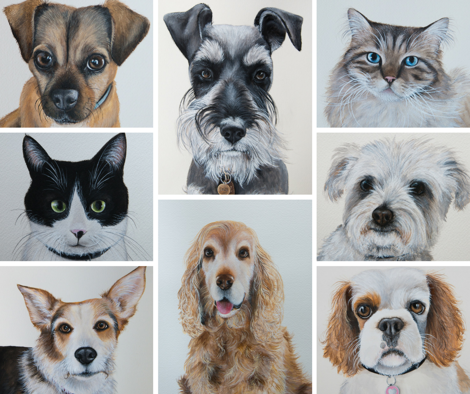 Pet Portraits from December 2016.