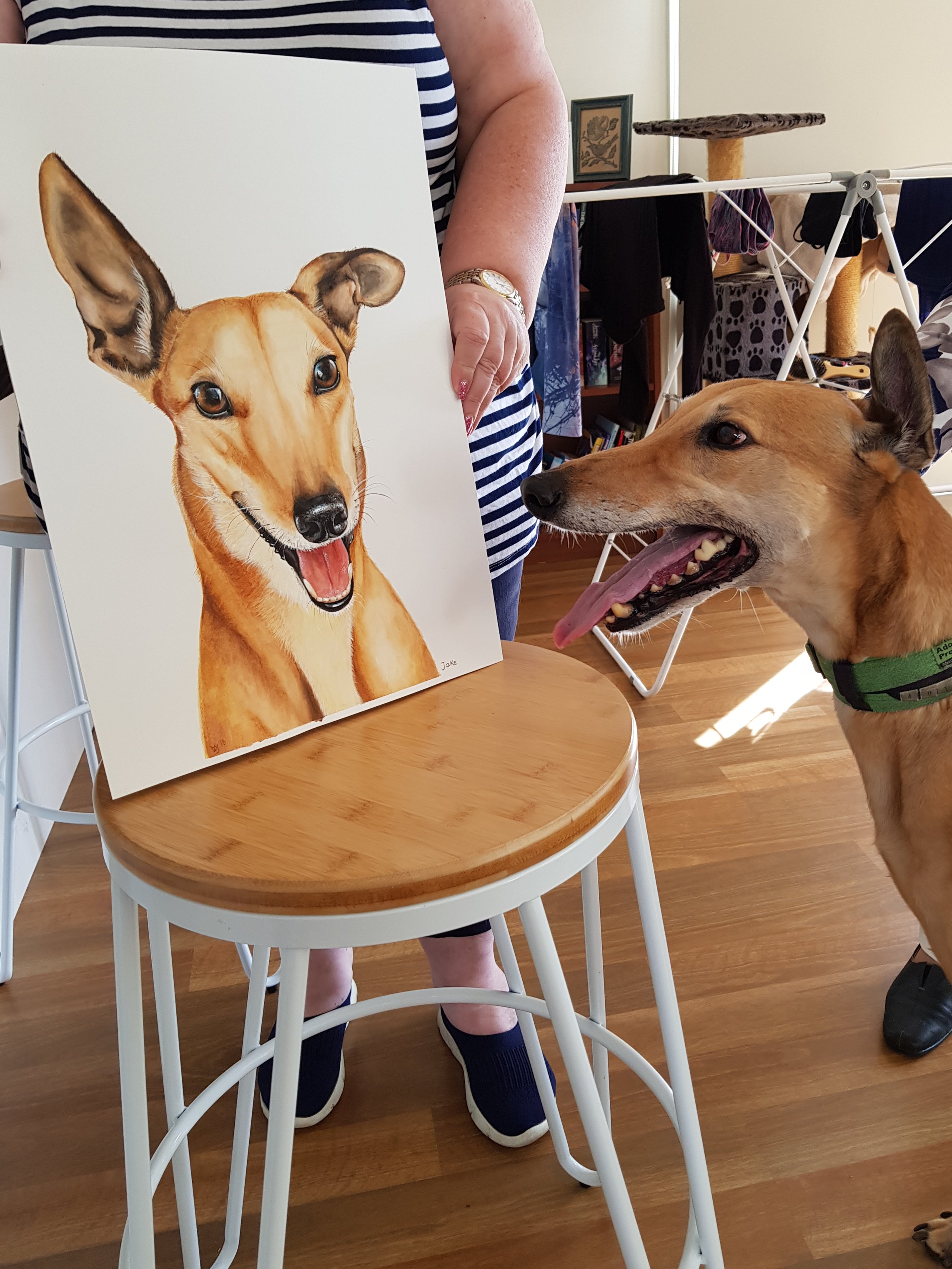 """""""I would thoroughly recommend Zoe to anyone looking to get a portrait of their beloved pet.    Zoe has accurately captured all of my much much loved Greyhound's features in the portrait. She has also made sure the portrait gives a great sense of Jake's happy playful spirit. Family and friends have commented how beautiful the work is and I must say I love it and will cherish it forever.    The process was simple just send some photos to Zoe and she does the rest. Zoe is so pleasant to deal with. She asks about your pet so as the portrait picks up the characteristics you want. She regularly sends updates with photos of progress. Along the way you can input if you wish. All in all a wonderful experience and I wouldn't hestitate to ask Zoe to paint a portrait of any other pet I may own."""" -  Merryn and Jake, Alphington"""