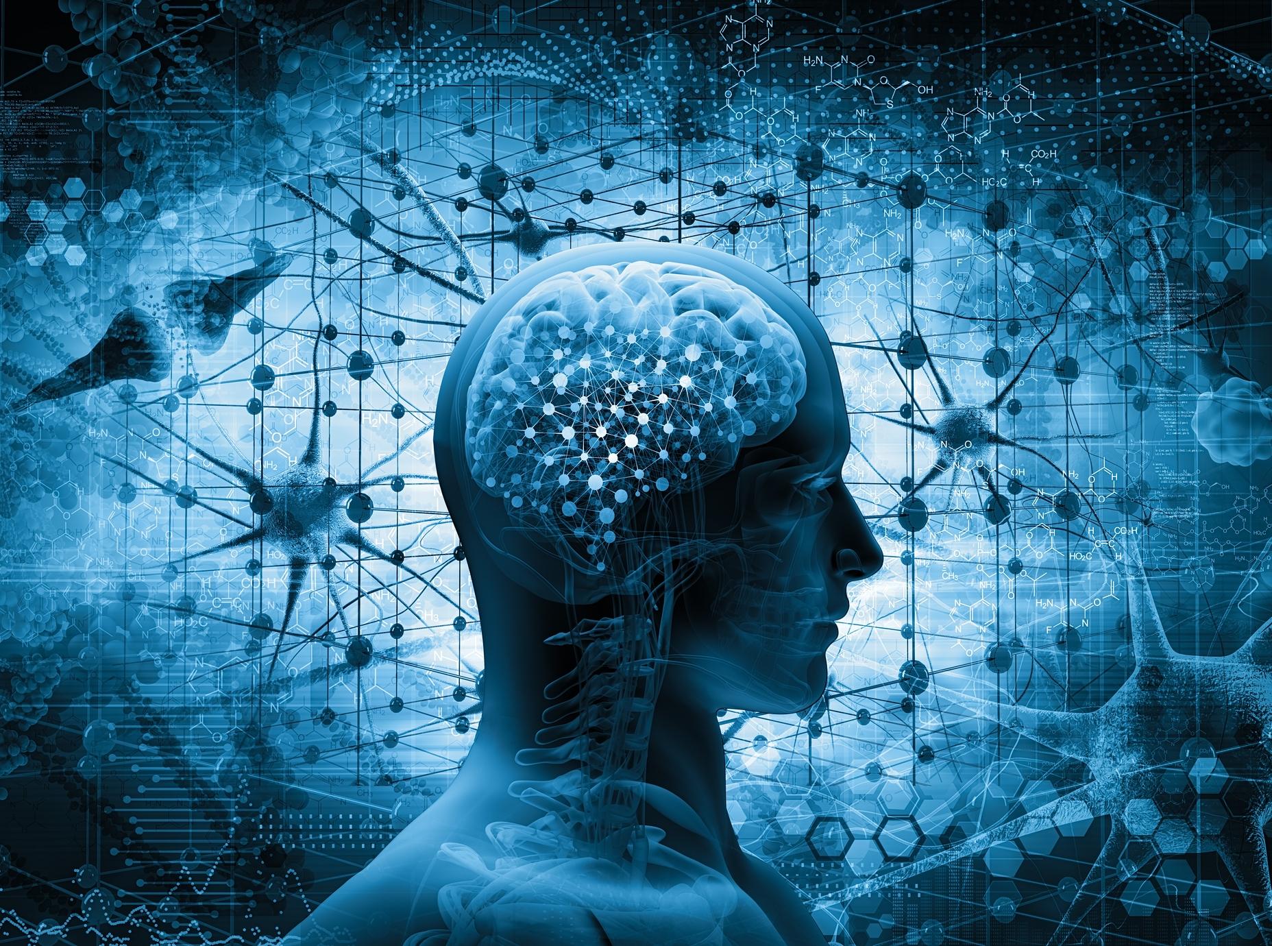 blue brain.jpg