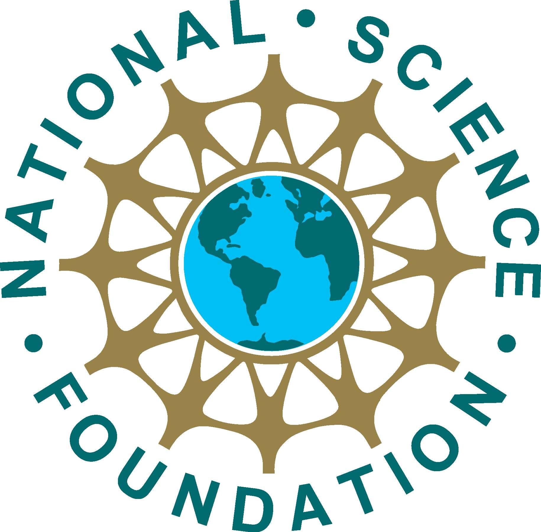 logo_nsf2.jpg