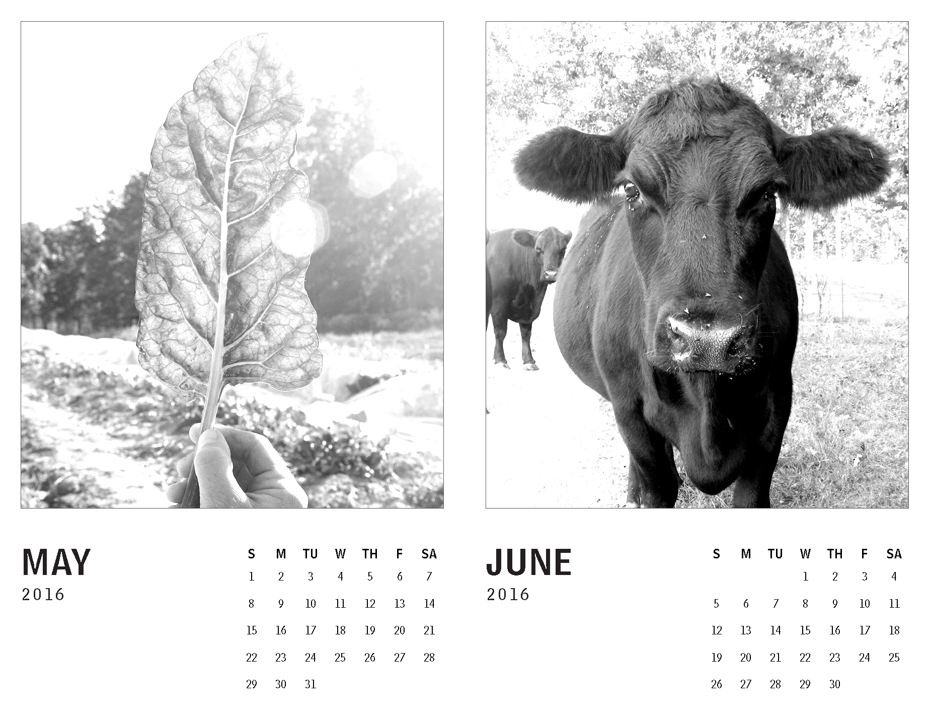 2016 Calendar – Tennessee_Page_3.png
