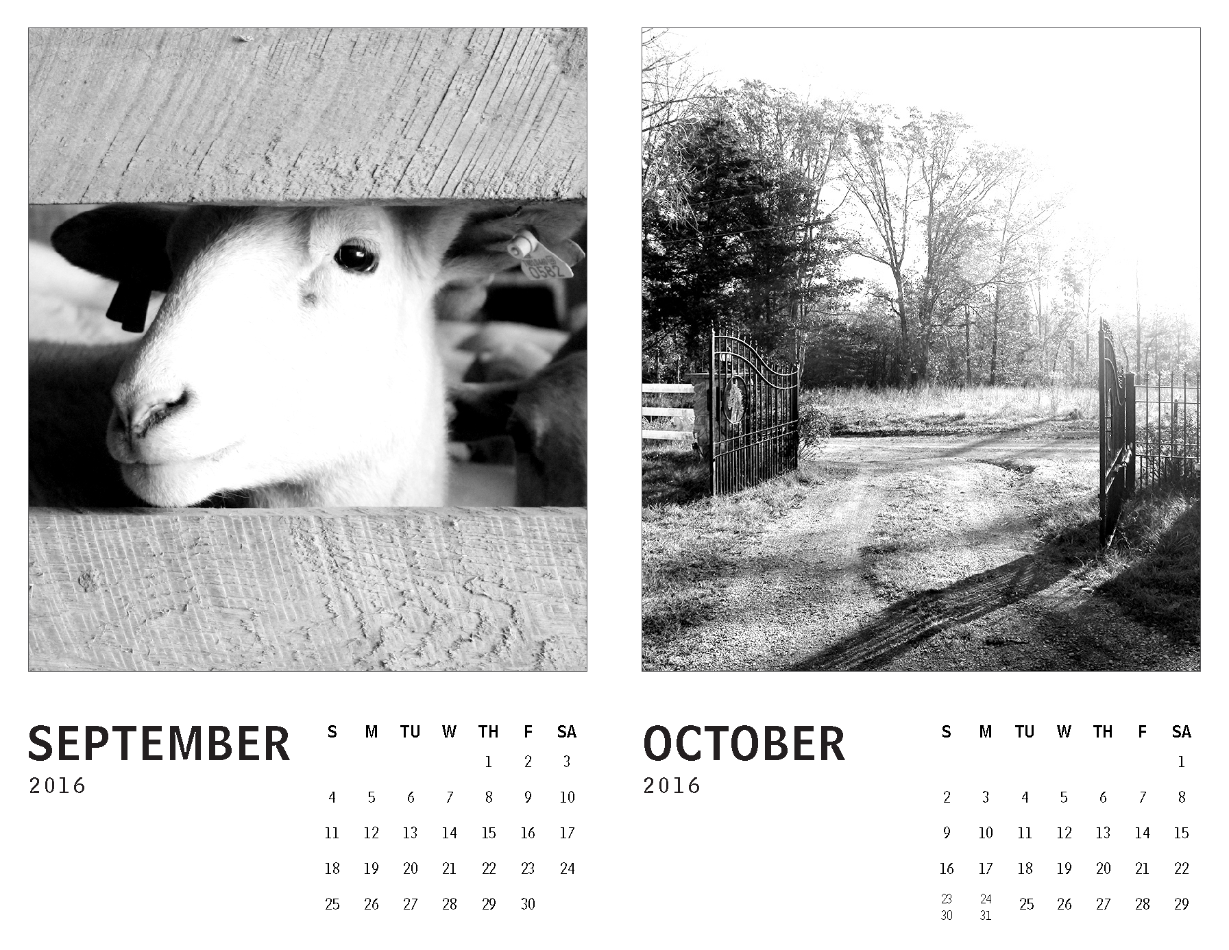 2016 Calendar – Tennessee_Page_5.png