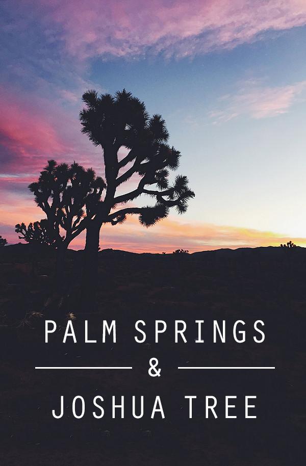 palm-springs-&-joshua-tree.png