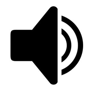 Wedding Videography Audio