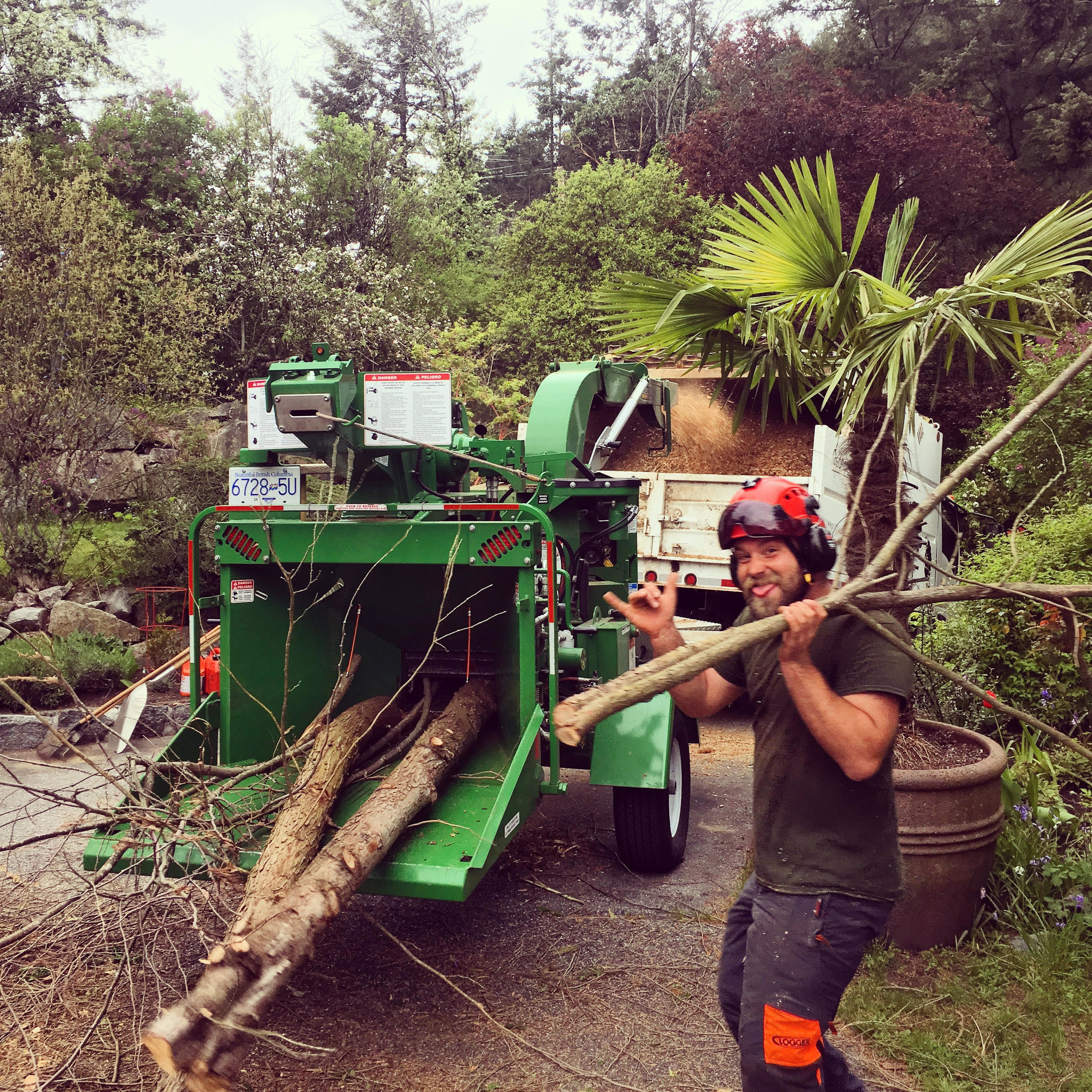 Tree work can be hard, but you need to have some fun.