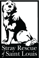 101 Dalmatians cast drive for Stray Rescue of St. Louis