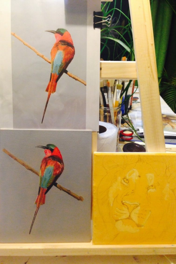 Southern Carmine Bee-Eater on Easel compared to the reference photo, the first painting of the series.