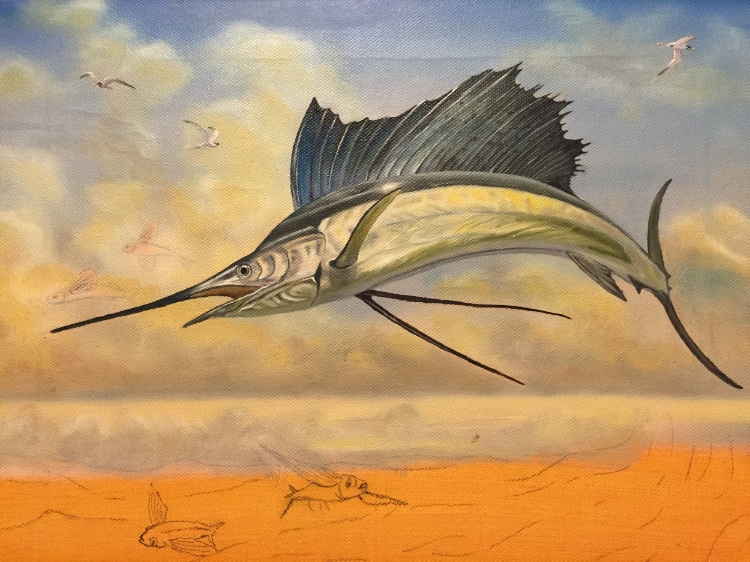 Sailfish- work in progress