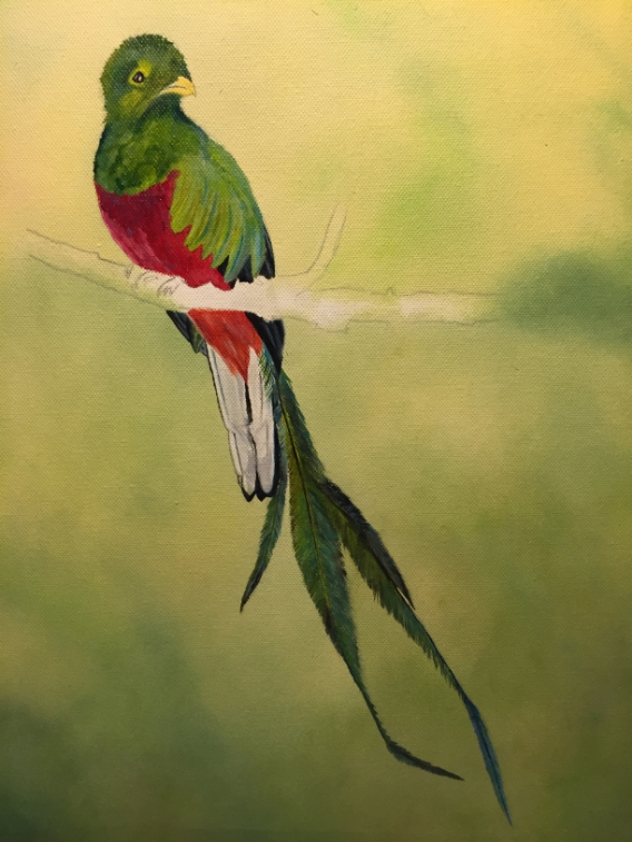 Quetzal- a lot of work to paint the iridescent feathers