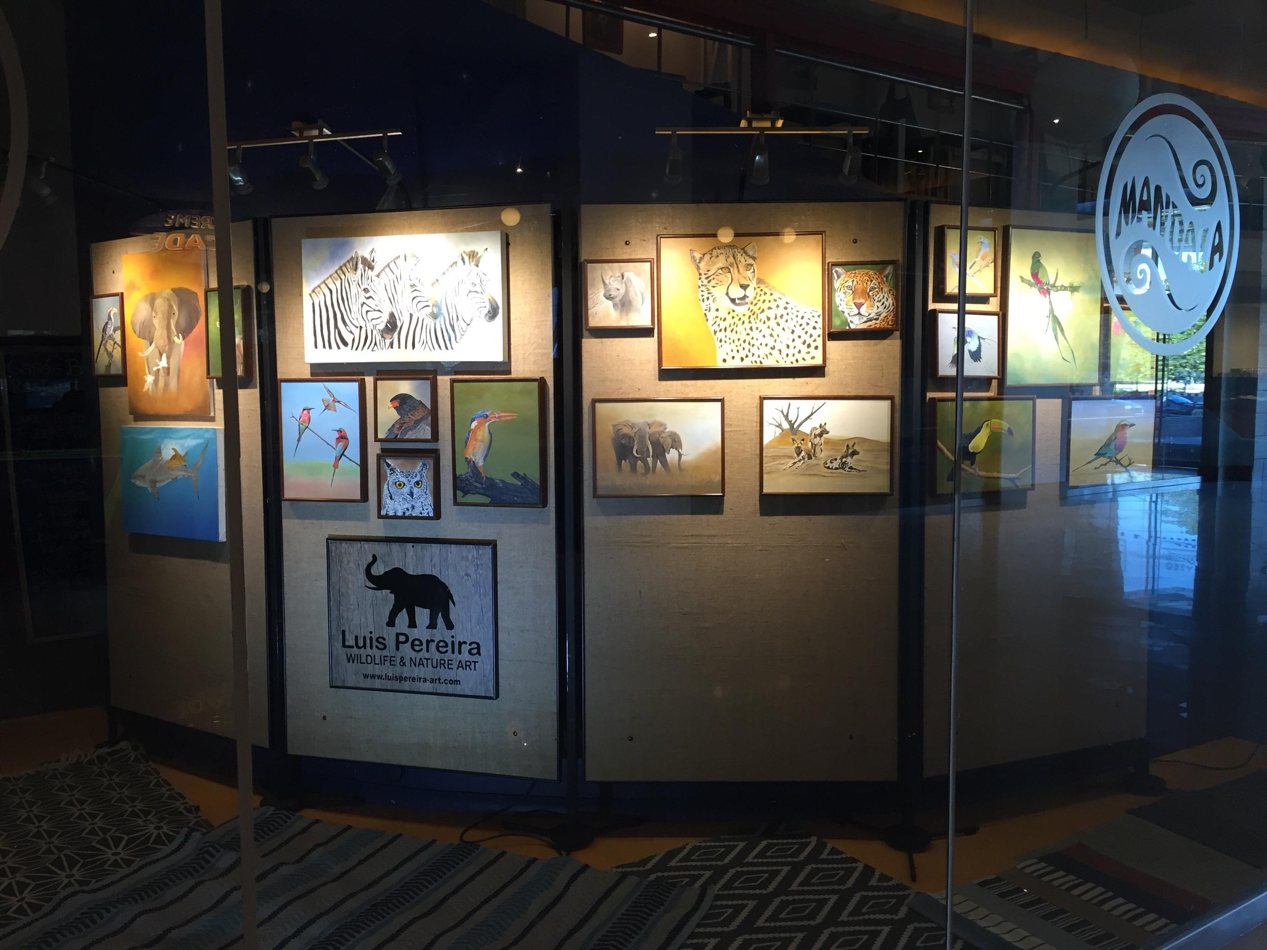 Expo at Mandala Cafe in Monticello Casino