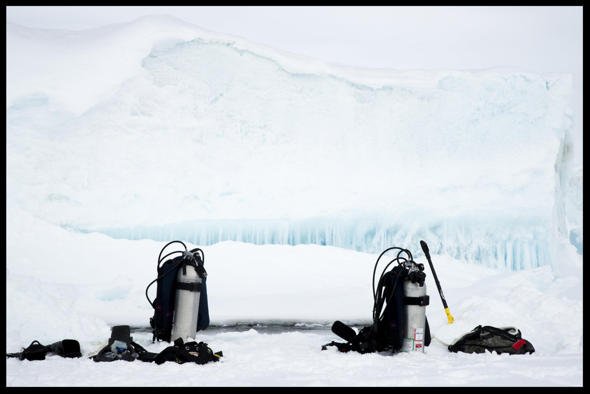Photo Credit: Francoise gervais / Arctic kingdom