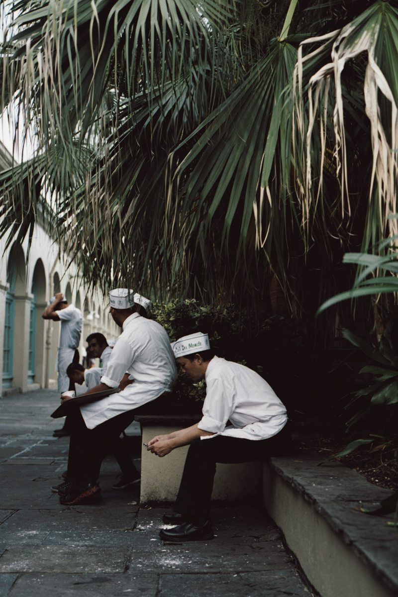 beewalker :     Cafe Du Monde, New Orleans