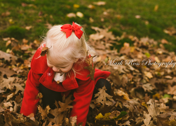 The strategically placed falling leaves were not at all staged.