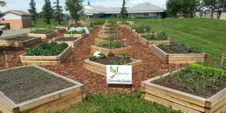 The Yellowbird Community Garden
