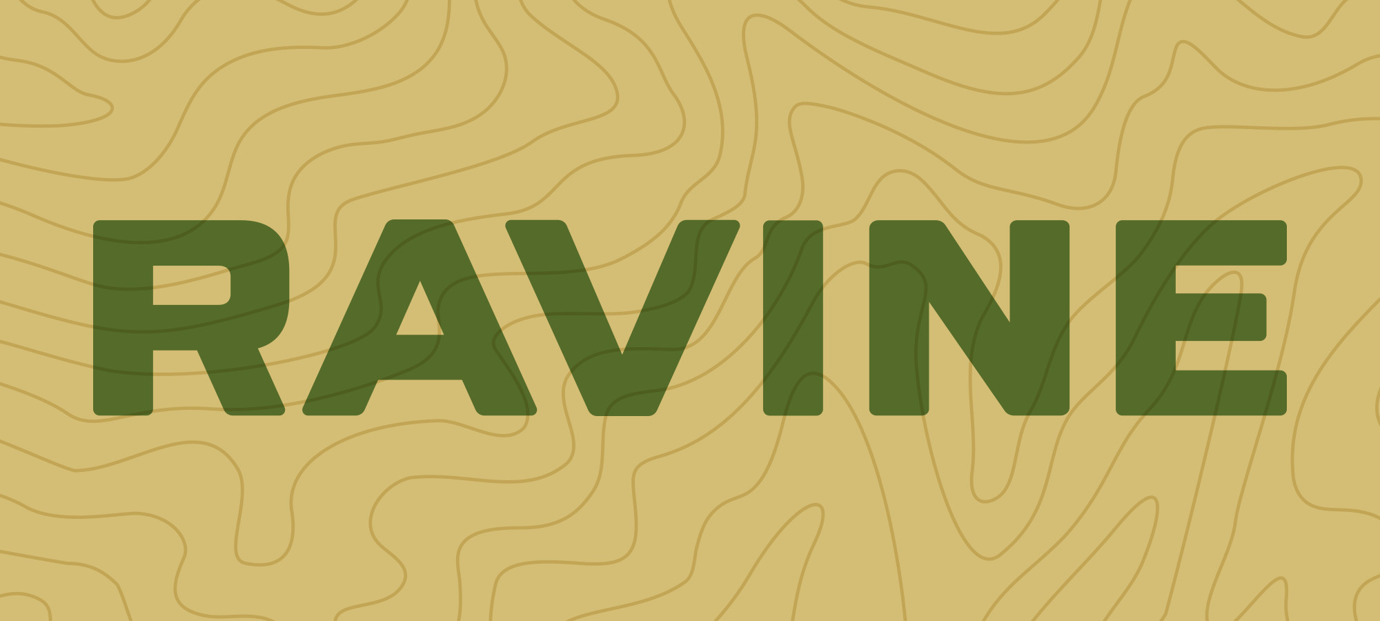 The Ravine identity features custom drawn letterforms inspired by aircraft identification numbers.