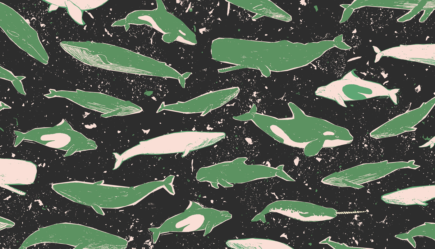 Whales — available on home goods from  society6  and on fabric from  spoonflower