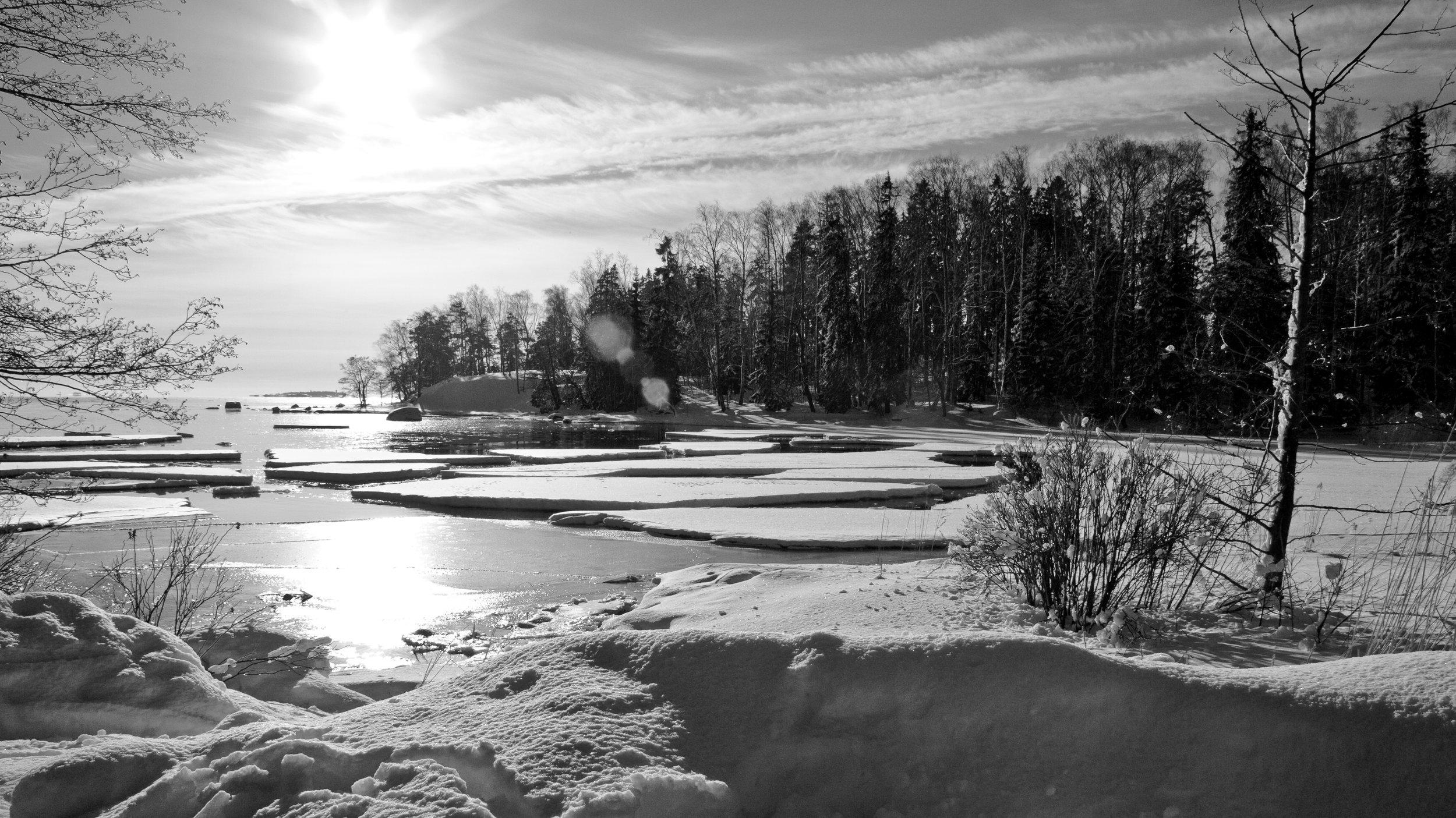 Winter Shoreline