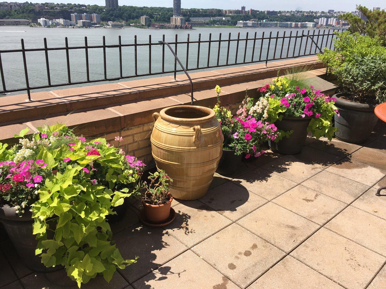 Rooftop Garden Design Nyc