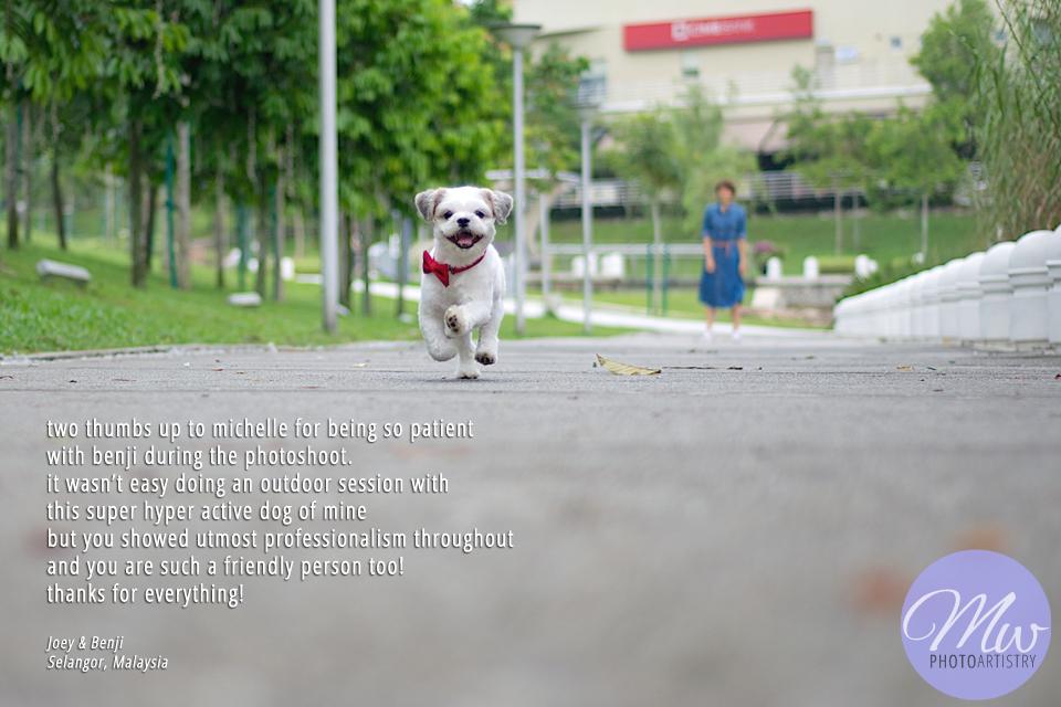 Malaysia Pets Photographer Testimonial Photo 01.jpg