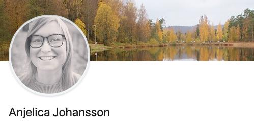 anjelicajohansson.com.png