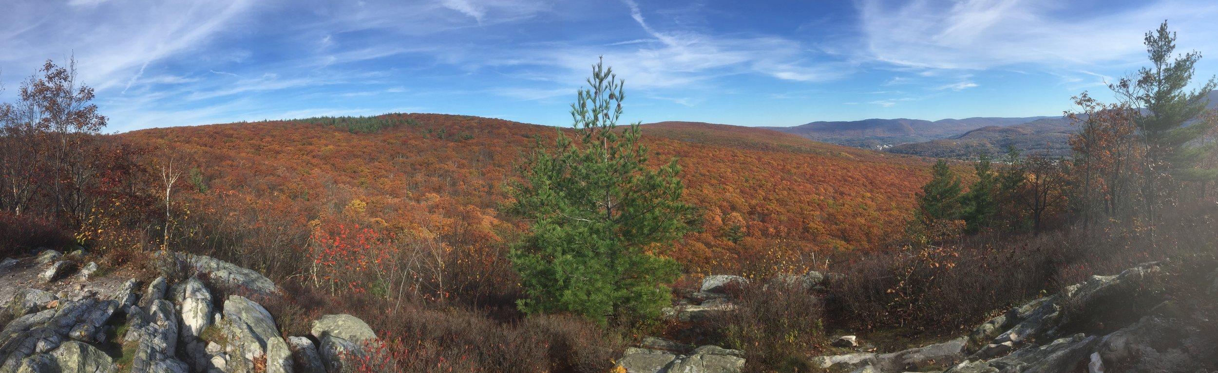 mountains, fall