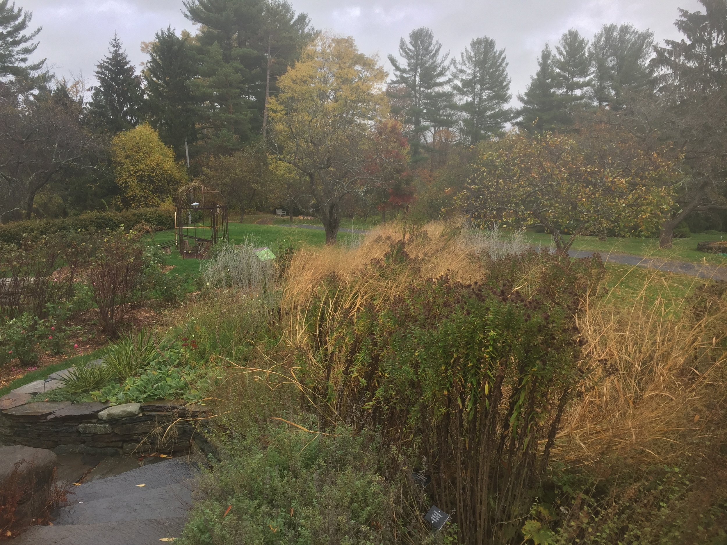botanical gardens, fall