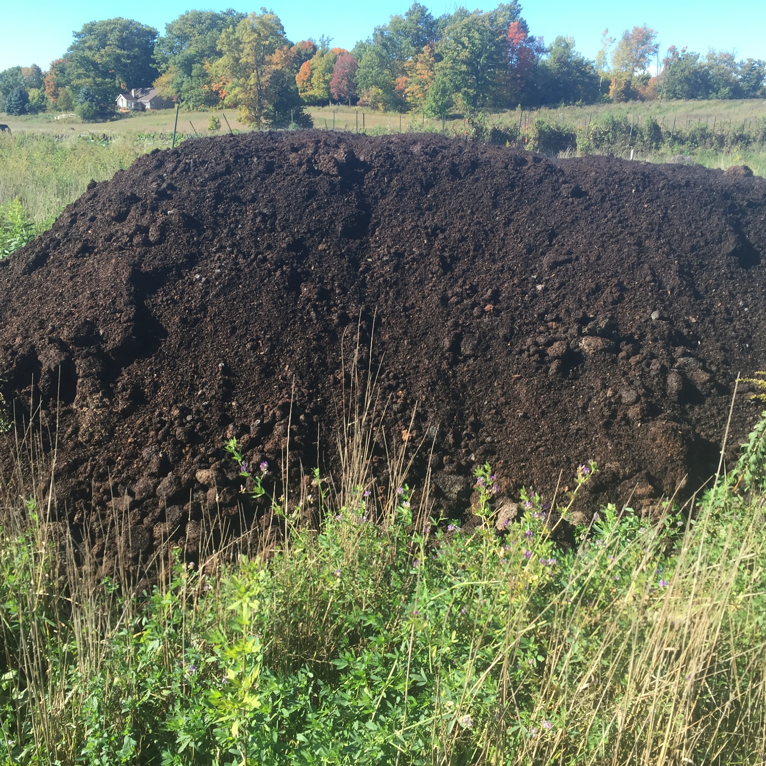 Ontario flower farmer, compost