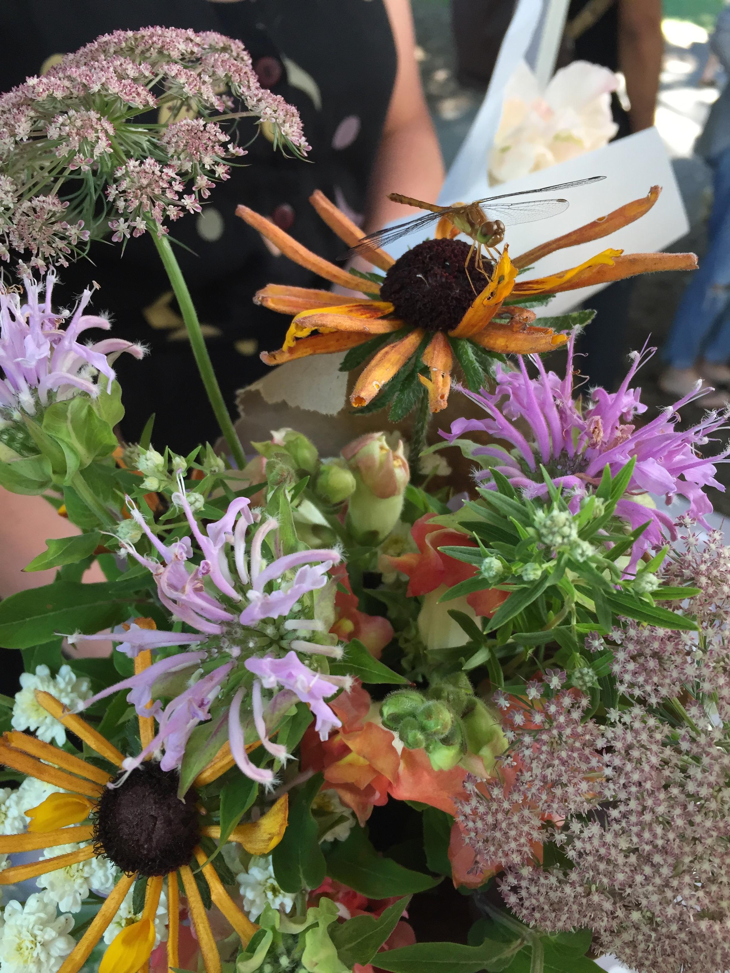 local flowers, ontario, flower farmer
