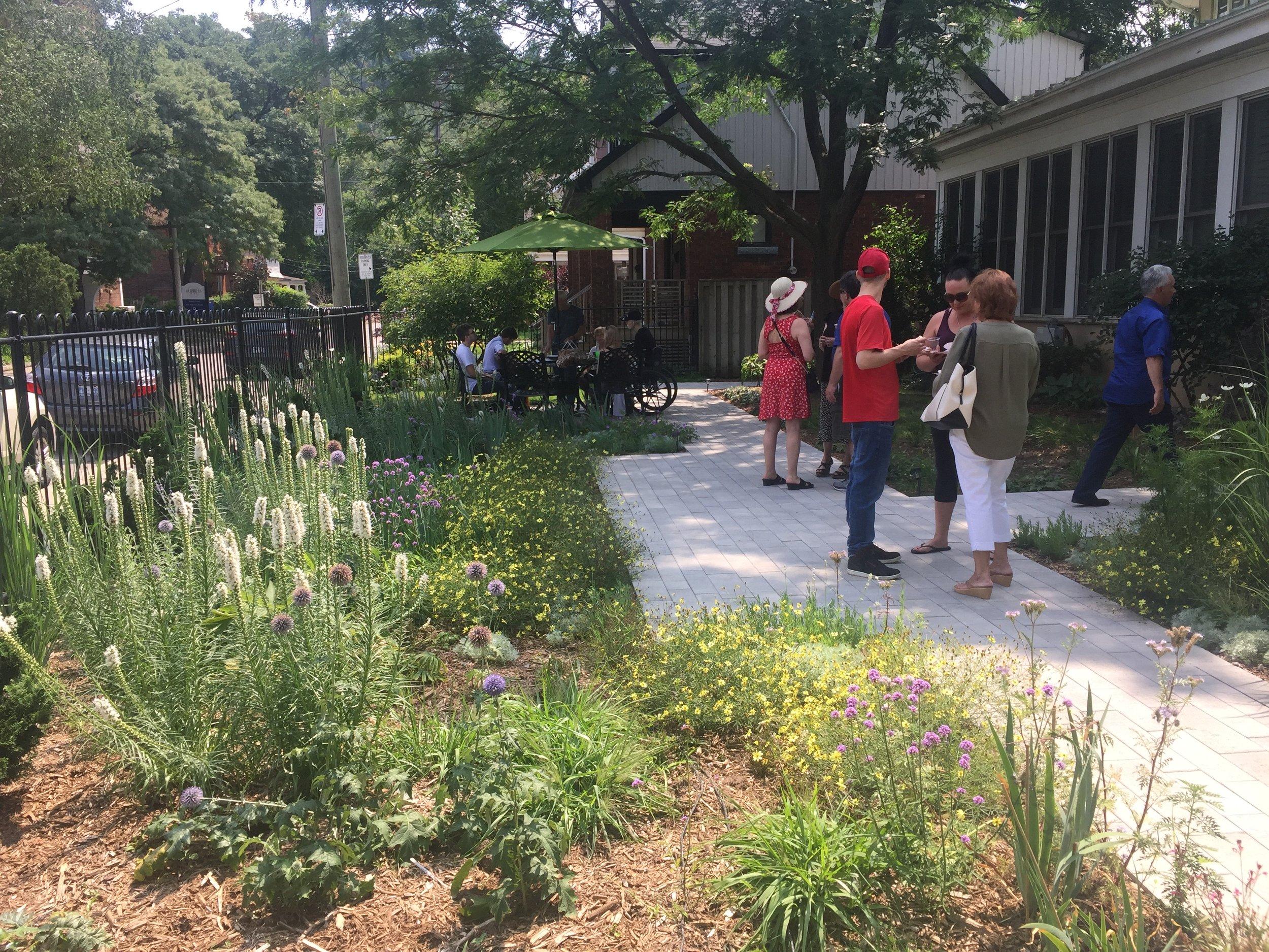 Side Garden in July