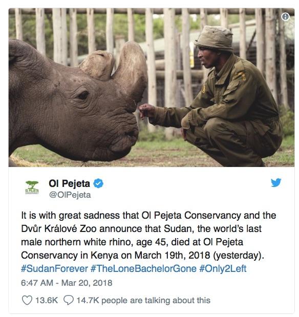 Die Todesanzeige Sudans auf Twitter  Screenshot