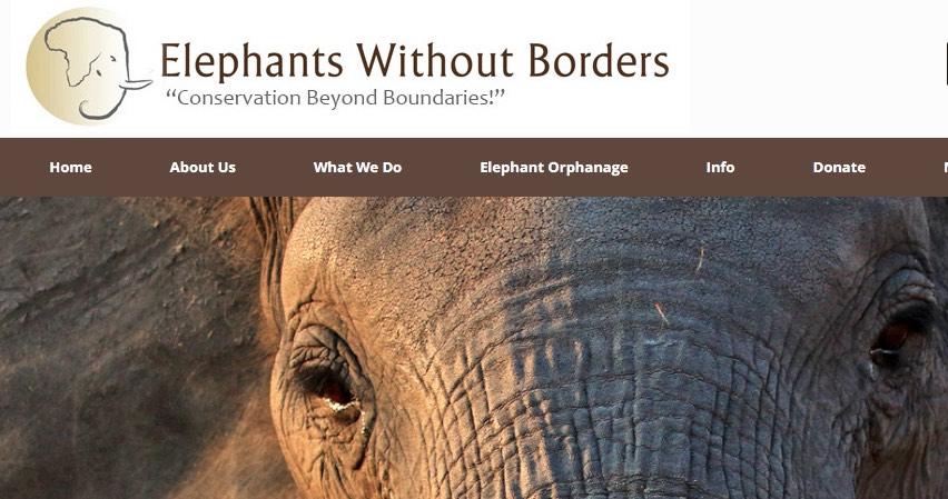 Streit um tote Elefanten: Wessen Version stimmt? |  © Symbolbild: G. Schachenmann