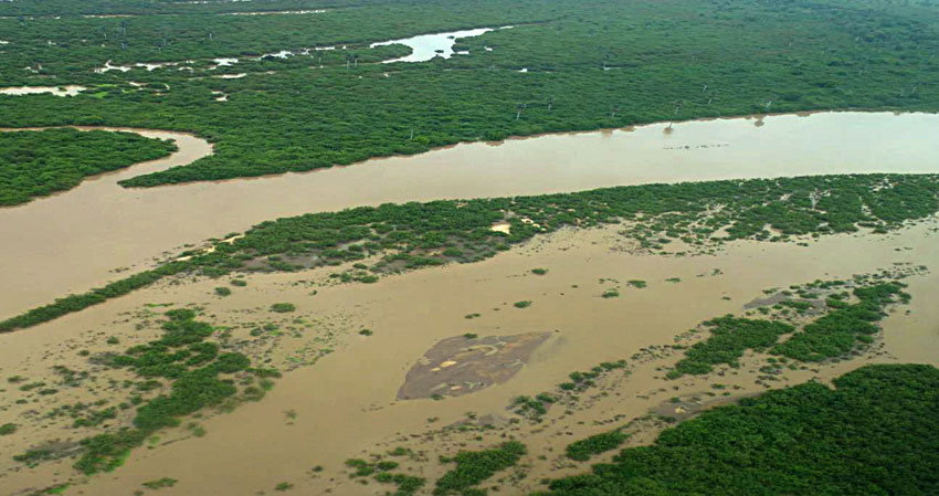 Noch unberührt: Rufiji-Fluss unterhalb des geplanten Damms |  © Foto by Rolf D. Baldus