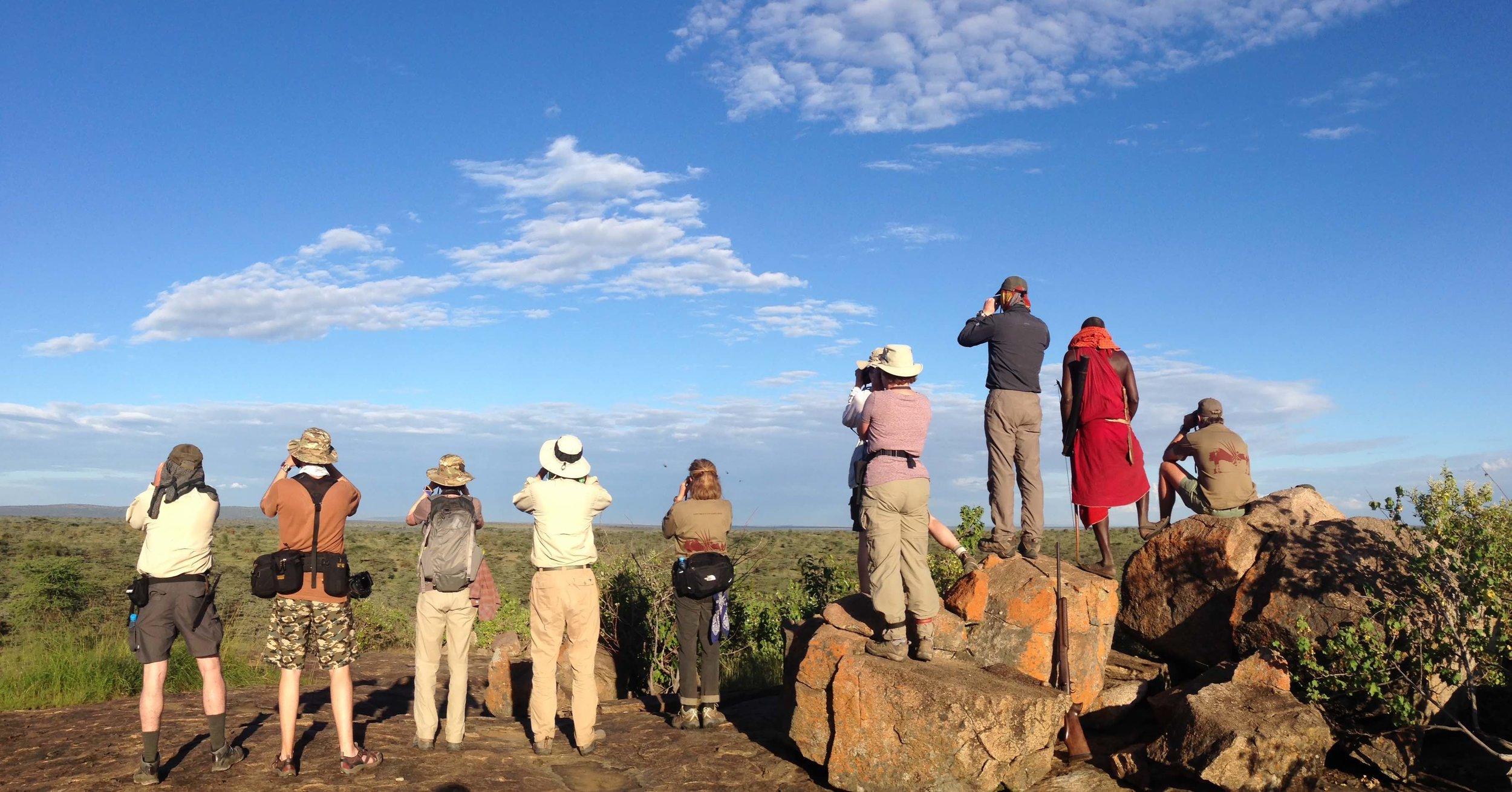 Viel zu sehen:  Safari-Touristen in der Serengeti, Tansania |  © Foto by Gian Schachenmann