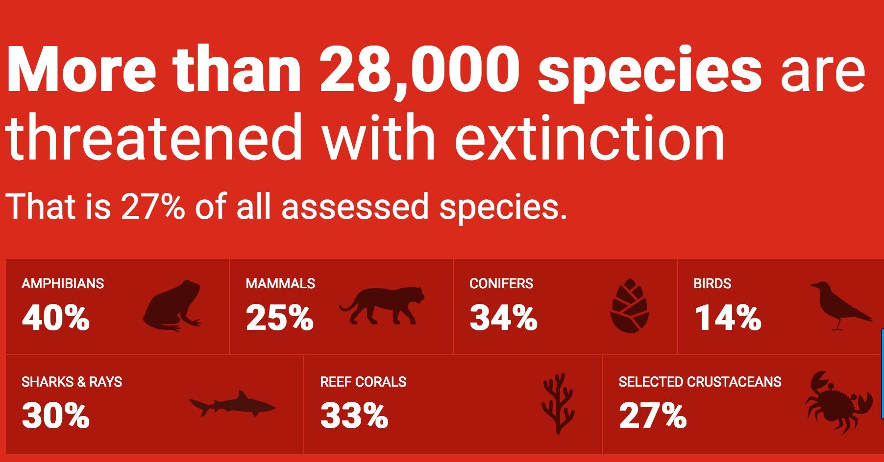 Rote Liste: Über 28'000 der bekannten Tierarten vor der Ausrottung bedroht |  © Cites
