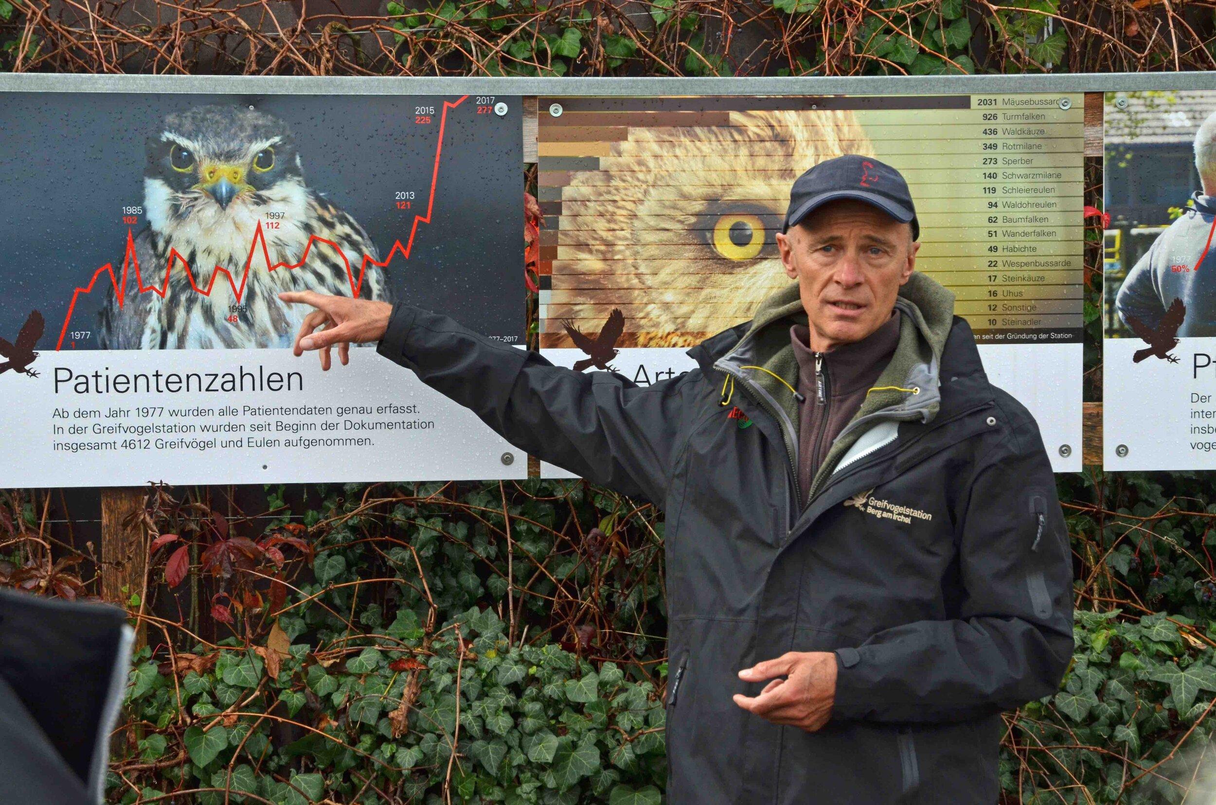 Schnellstes Tier:  Vogelkenner Claude Järmann zeigt auf einen Wanderfalken